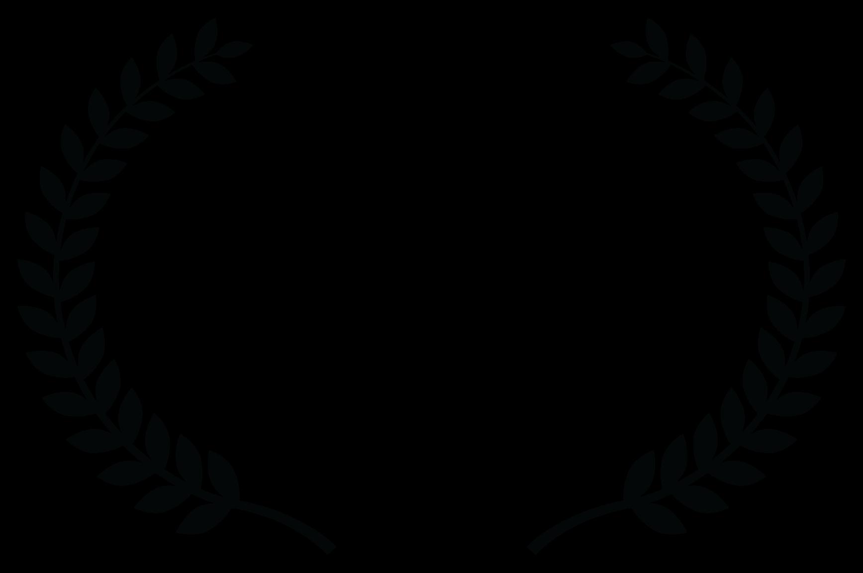 Bronze Palm Award Winner - Mexico International Film Festival - 2015